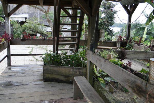 JardinSonore6