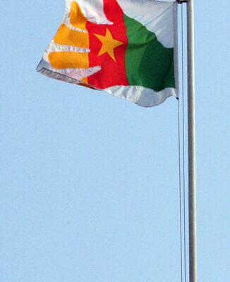 flag_LucFosther_Diop